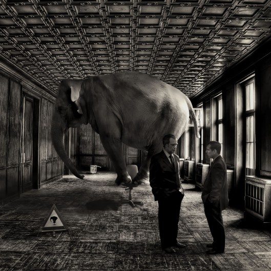 The Elephant in the Room (4/6)
