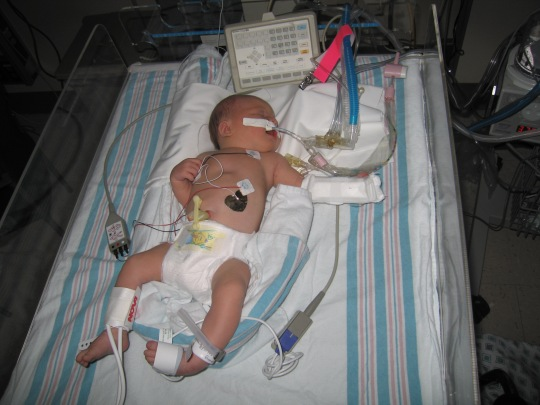 2005 pics Sasha newborn will too 041