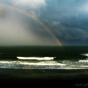 Myrtle Rainbow Orton