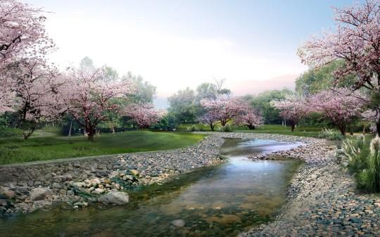 Blossoms-Park-Trees-Blossom-Park-Nature-Landscape
