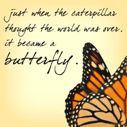 It-Became-A-Butterful-CY142